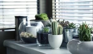 Wykorzystaj stylowe metody osłonięcia okien żaluzjami